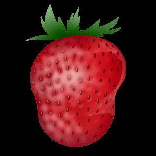Bergdalsjordbær