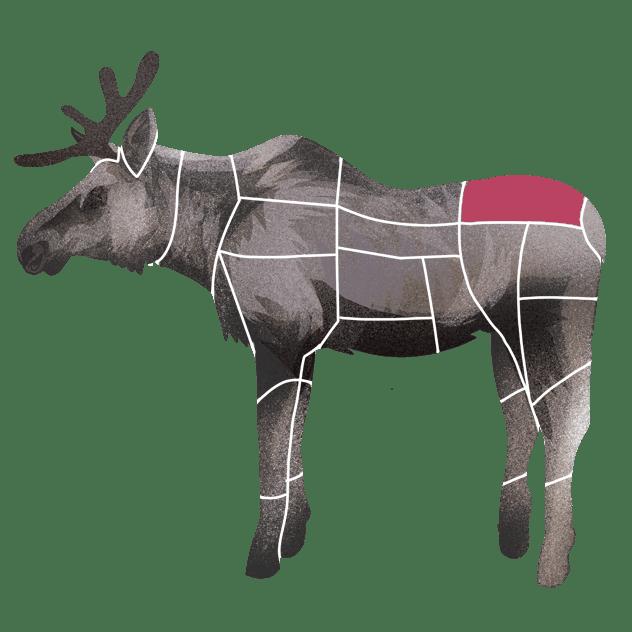 Culotte av elg
