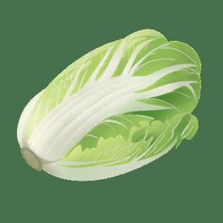 Kinakål