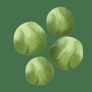 Rosenkål