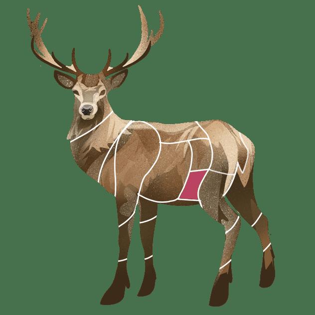 Slagside av hjort