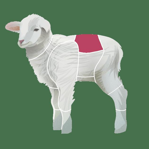 Sadel av lam