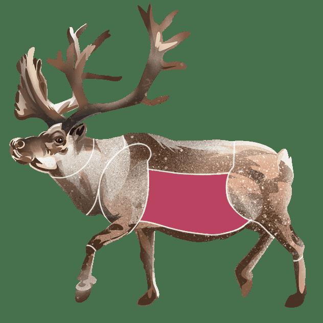 Side av reinsdyr