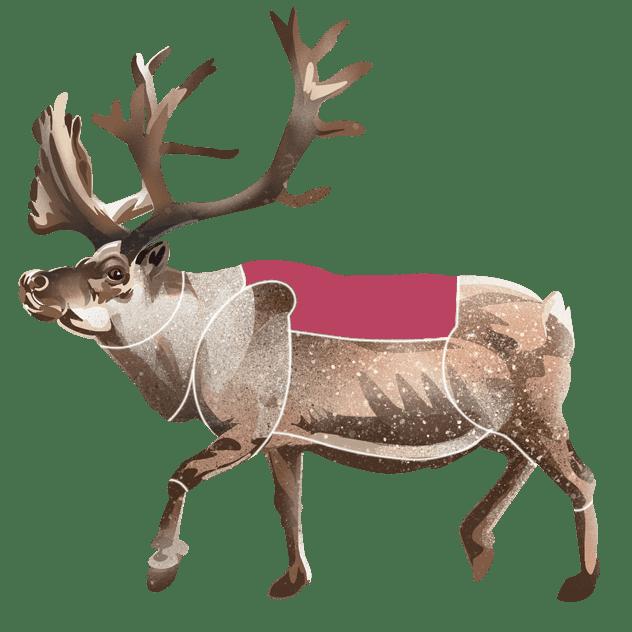 Sadel av reinsdyr